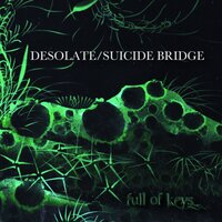 Desolate / Suicide Bridge — Full Of Keys