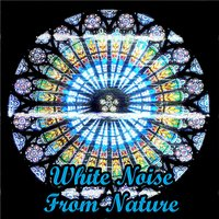 White Noise From Nature — White Noise Therapy, White Noise Meditation, El Ruido Blanco