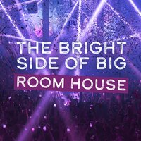 The Bright Side of Big Room House — сборник