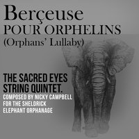 Berceuse pour orphelins (Orphans' Lullaby) — Paul Buck, Nicky Campbell, Sacred Eyes String Quintet