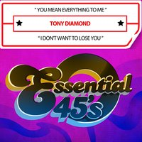 You Mean Everything to Me / I Don't Want to Lose You — Tony Diamond