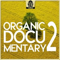 Organic Documentary 2 - Sophisticated Strings — Matmoti