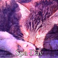 Spa Day — Relaxing Spa Music