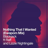 Nothing That I Wanted — RAFF, BlackJack, Lizzie Nightingale