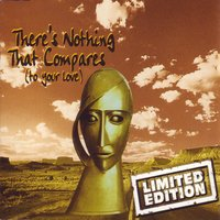 There's Nothing That Compares — Limited Edition