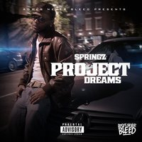 Project Dreams — Springz