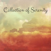 Collection of Serenity — Rain Sounds