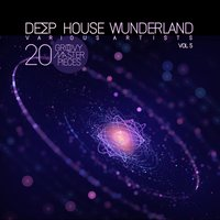 Deep House Wunderland, Vol. 5 (20 Groovy Master Pieces) — сборник