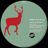 Magic Flute — Carlo In Action