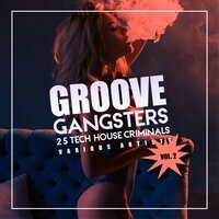 Groove Gangsters, Vol. 2 (25 Tech House Criminals) — сборник