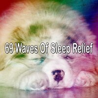 69 Waves of Sleep Relief — Mother Nature Sound FX