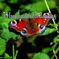 78 Inspirations For Reading — Classical Study Music
