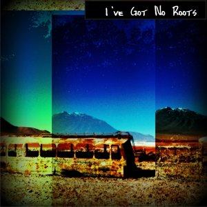 Single Grey - I've Got No Roots
