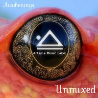 Awakenings the Best of Arteria Music Label 2010 Unmixed — сборник