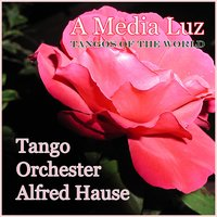 A Media Luz - Tangos of the World — Tango Orchester Alfred Hause