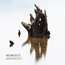 Hierarchy — Moments