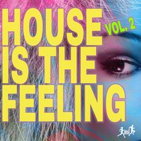 House Is the Feeling, Vol. 2 — сборник