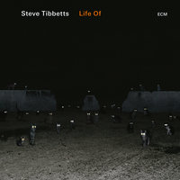 Life Of — Steve Tibbetts