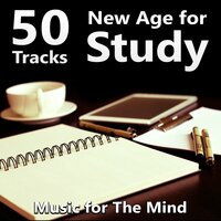50 Tracks New Age for Study - Instrumental Music for Concentration, Calm Background Music for Homework, Brain Power, Relaxing Music, Exam Study, Music for The Mind — Motivation Songs Academy