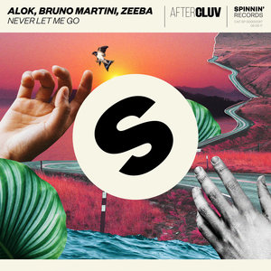 Alok - Never Let Me Go