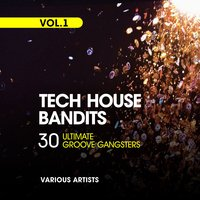 Tech House Bandits, Vol. 1 (30 Ultimate Groove Gangsters) — сборник