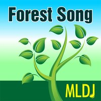Forest Song — MLDJ