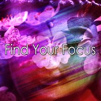 Find Your Focus — Brain Study Music Guys