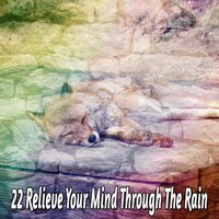 22 Relieve Your Mind Through The Rain — Thunderstorms