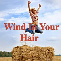 Wind In Your Hair — сборник