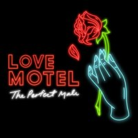 The Perfect Male — Love Motel