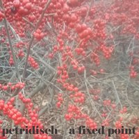 A Fixed Point — Petridisch
