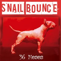 36 Meses — Snail Bounce