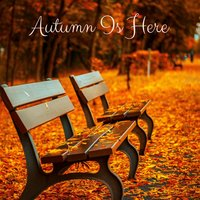 Autumn Is Here — Meditation Music Zone