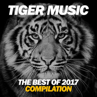 The Best Of Tiger Music 2017 — сборник