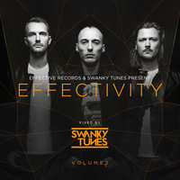 Effectivity, Vol. 2: Fixed By Swanky Tunes — сборник