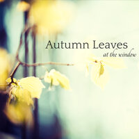 Autumn Leaves at the Window – Jazz & Piano Notes, Fall Leaves Romantic Autumn Mood Music — Meditation Relax Club