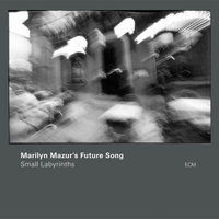 Small Labyrinths — Marilyn Mazur's Future Song