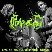 Live in York — Pemphigoid
