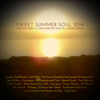 Sweet Summer Soul 2014 - TGEE Records 1st Anniversary Compilation — сборник