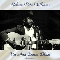Up And Down Blues — Robert Pete Williams