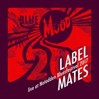 Blue Mood Label Mates - Live at Notodden Blues Festival 2017 — сборник