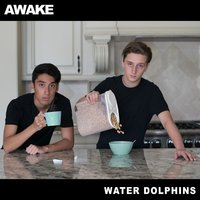 Awake - EP — Water Dolphins