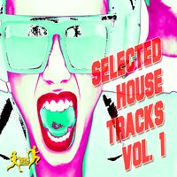 Selected House Tracks, Vol. 1 — сборник