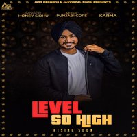 Level So High — Honey Sidhu