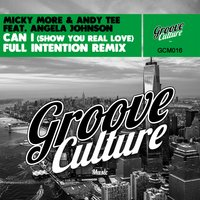 Can I (Show You Real Love) — Micky More, Andy Tee, Angela Johnson