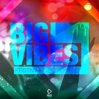 Big Vibes - Festival Session, Vol. 1 — сборник
