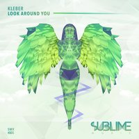 Look Around You — Kleber