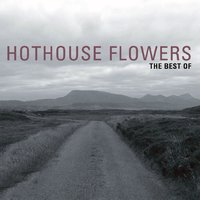 The Best Of — Hothouse Flowers