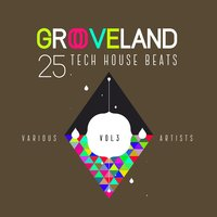 Grooveland (25 Tech House Beats), Vol. 3 — сборник