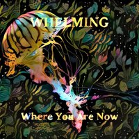 Where You Are Now — Whelming